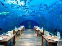 The Conrad Maldives Rangali Island